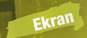 ekran2010.jpg