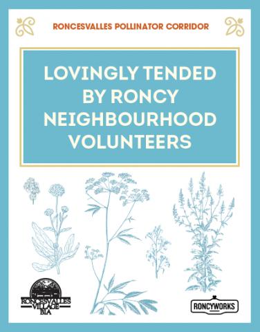 "Garden Sign: ""Lovingly Tended by Roncy Neighbourhood Volunteers."""